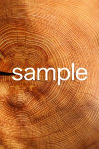 woodのサムネイル